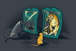 görbe tükör