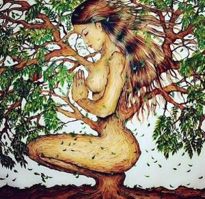 tree mother
